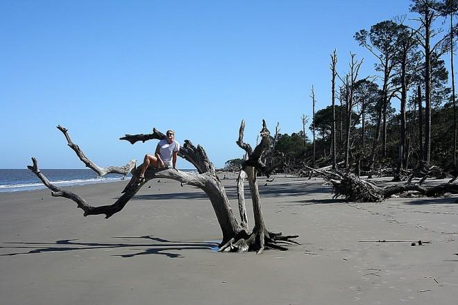 Erin Climbs a Tree