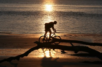 Evening Bike Ride