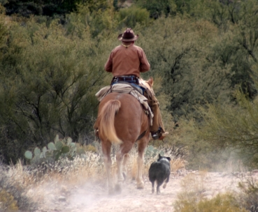 Horseman and Dog