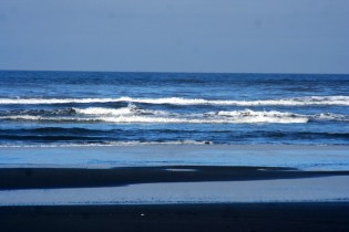We Love Watching the Ocean